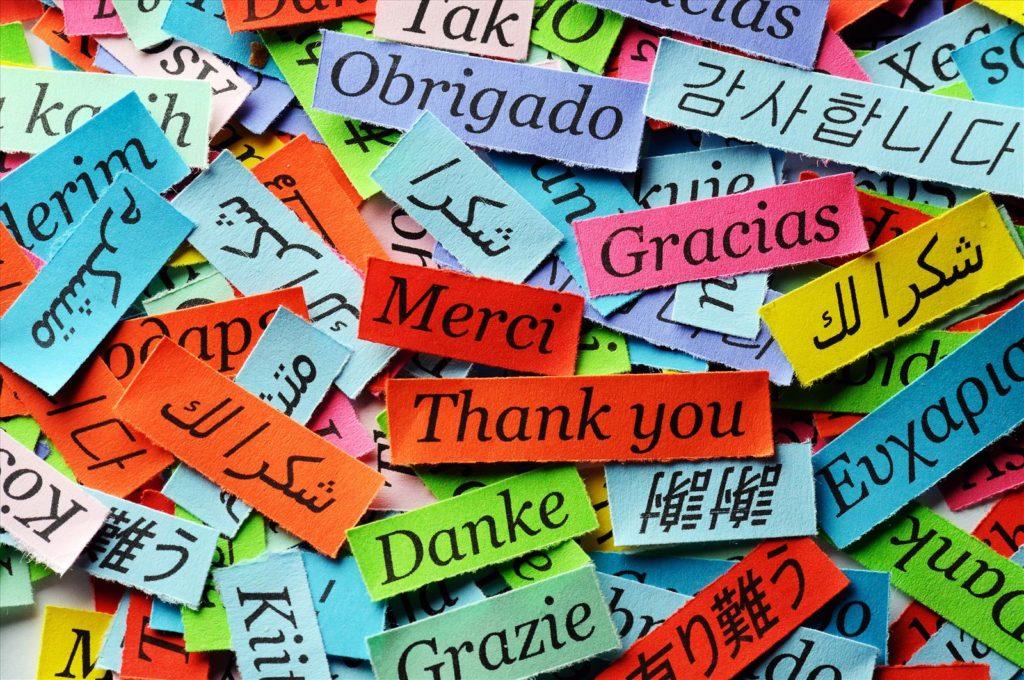 Gracias, Agradecimiento a Proyectos Web